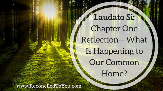 Laudato Si Chapter One Graphic