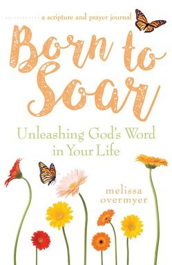 Born to Soar Book Cover