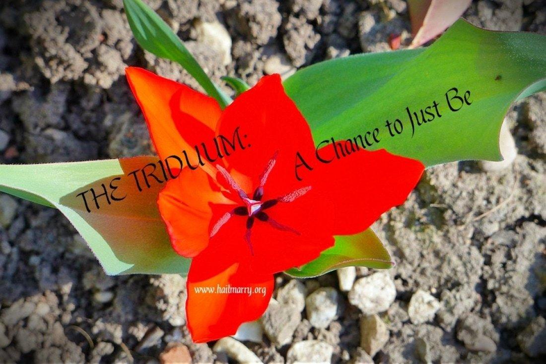 The Triddum