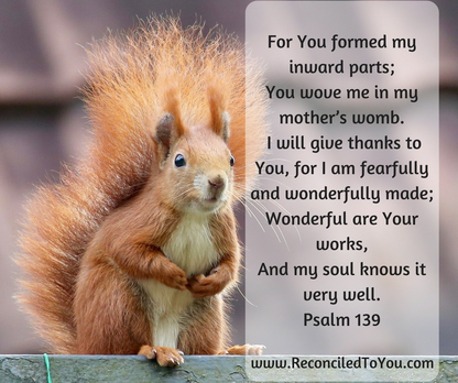 For You Are Wonderfully Made