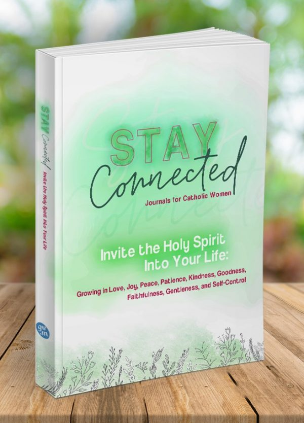 Invite the Holy Spirit...book cover